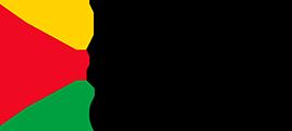 IBN Guyana - Intelligent Business Network
