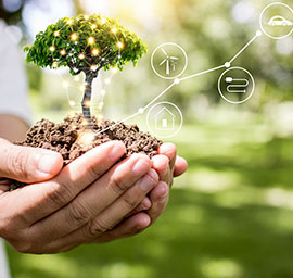 Commitment to sustainable development